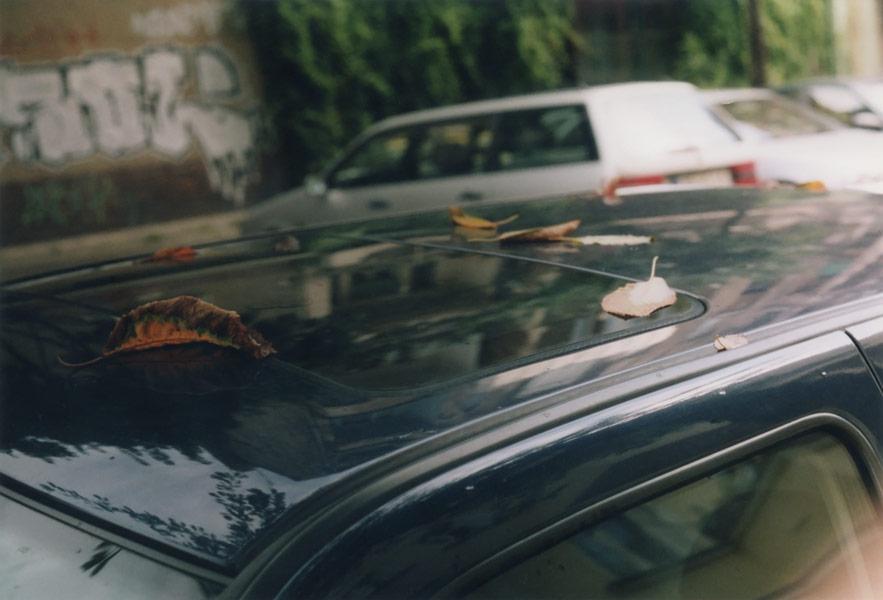car_261.jpg
