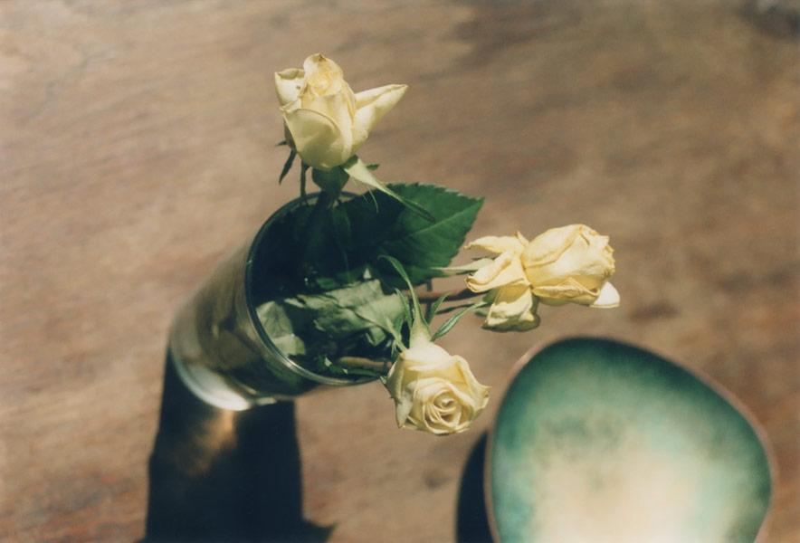 flora_131.jpg