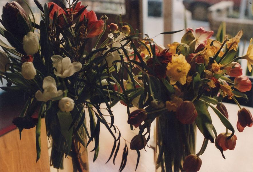 flora_201.jpg