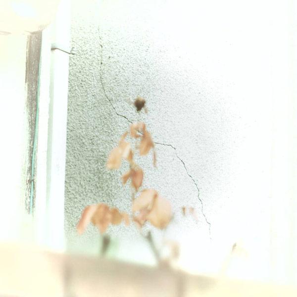 kwf_061.jpg